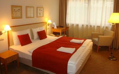 Double room in Hotel Castle Garden - new 4-star hotel in Budapest - Hotel Castle Garden**** Budapest - 4 star hotel in the Castle District in Budapest